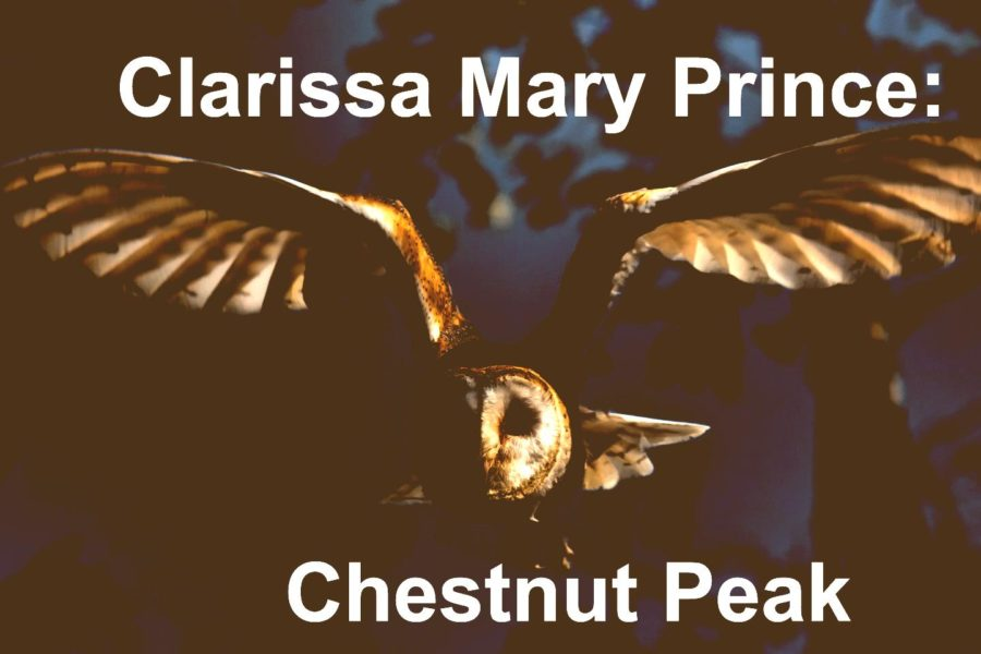 Clarissa Mary Prince: Chestnut Peak (Luces y sombras)