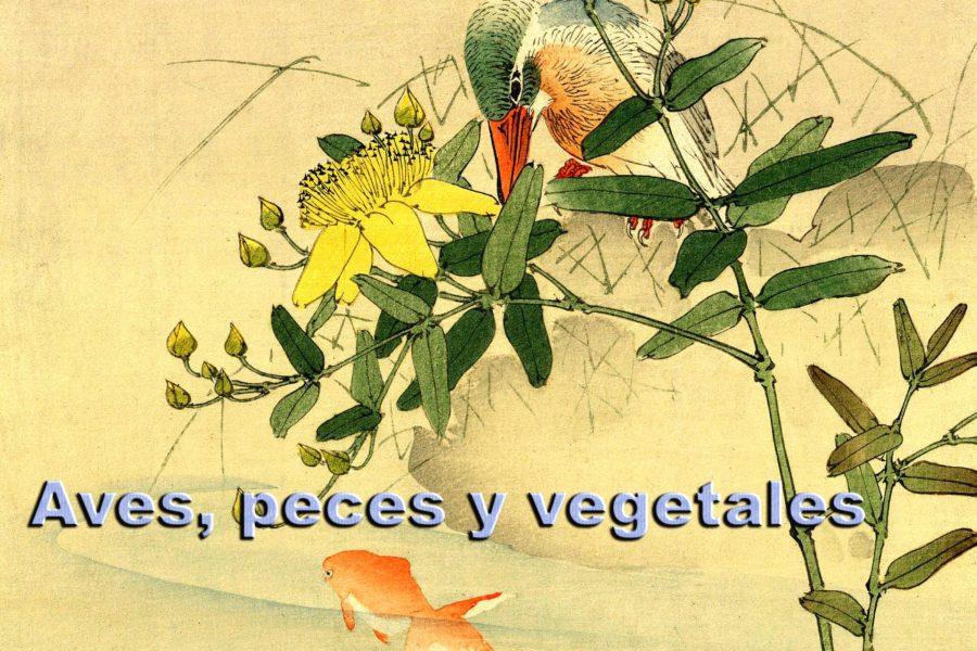 Aves, peces y vegetales.
