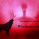 La sombra y la pesadilla en Windumanoth 8