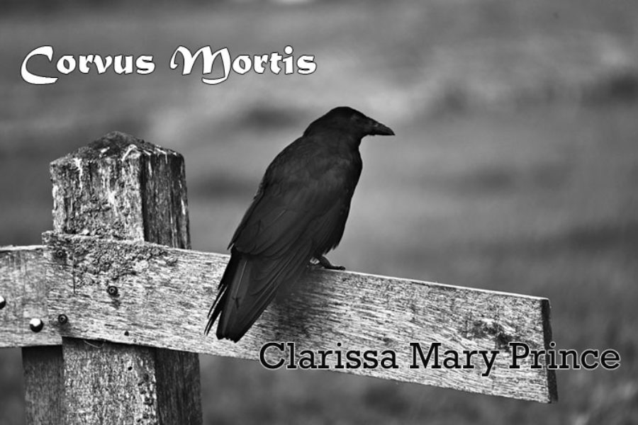 Corvus Mortis. Clarissa Mary Prince